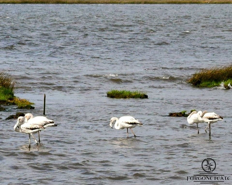 Parque Natural Sao Jacinto