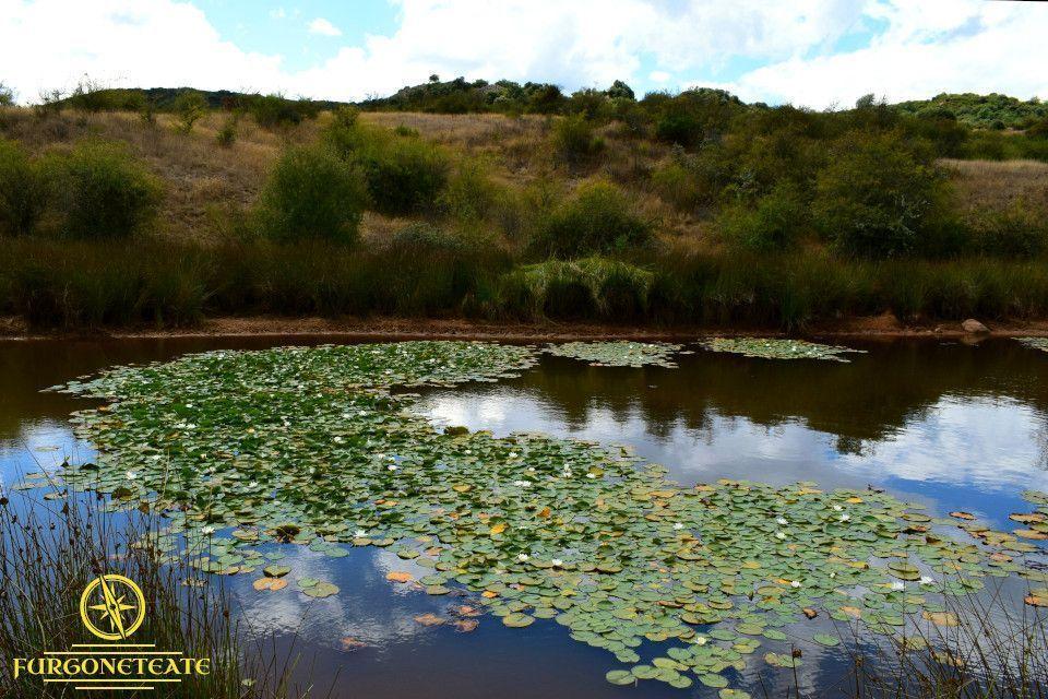 Senda de Lago Sumido