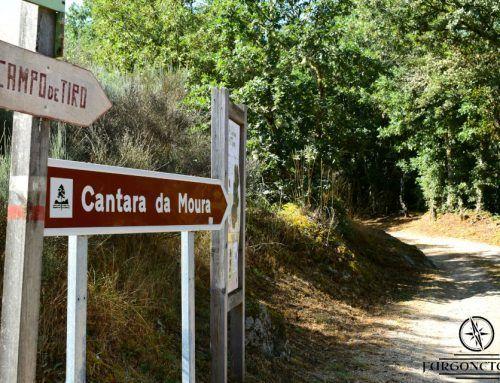 Ruta Cántara da Moura